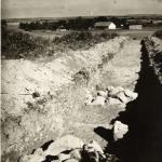 Wykopaliska prowadzone na niezidentyfikowanym stanowisku (Archeologiczne dziedzictwo 2011, DVD).